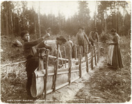 A black-and-white photograph depicting the process of building a birch-bark canoe. Stakes are in the ground forming an outline of a canoe. Bark is arranged to form canoe walls. Several figures are in the photograph working on this project.