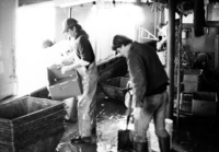 A photograph of two men cleaning up the tug after all fish have been pulled and sorted.