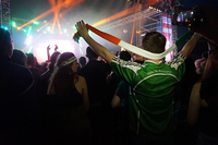 Fans in a concert crowd wear Irish tricolour clothing. One wears a green commemorative sports jersey.
