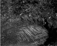 7 Photograph of the mosaic in room 4 taken by C. Loomis Dana and J. Cotton Dana, 1910.