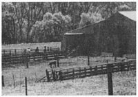 A shearing shed on an up-country station. The landholder and two of his men await the shearing crew.