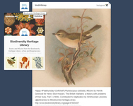 "This image shows the ""preview"" menu of a blog on the Tumblr Dashboard."