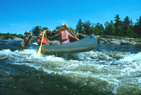 A color photograph of Bill Mason and his family paddling an aluminum canoe through rapids.