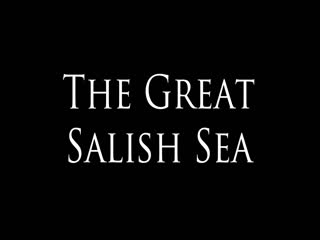 "A music video of Dana Lyons' song ""The Great Salish Sea"" about the changing sound of boat noise on orcas over the last century."