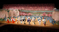 Figure 8.1. On a stage eighteen meters wide and surrounded by pink cherry blossoms, thirty-six female dancers in traditional costume stand in rows spreading out their hands.