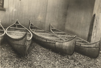 A black-and-white photograph of several birch-bark canoes lined up.