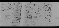 Film still from Mist where ants are swarming on the account book in Yun's fantasy.