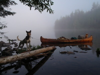 A color photograph of Erik Simula's canoe in the water, tied near the shore and packed with gear. His dog stands on a log by the shore.