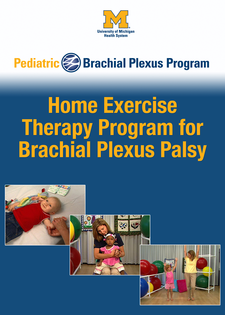 Cover image for Home Exercise Program for Brachial Plexus Palsy