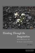 Cover image for Thinking through the imagination: aesthetics in human cognition