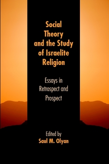 Cover image for Social theory and the study of Israelite religion: essays in retrospect and prospect
