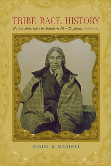 Cover image for Tribe, race, history: Native Americans in southern New England, 1780-1880