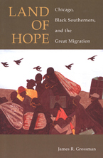 Cover image for Land of hope: Chicago, Black southerners, and the Great Migration