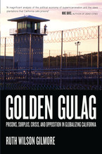 Cover image for Golden gulag: prisons, surplus, crisis, and opposition in globalizing California