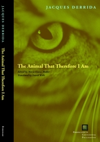 Cover image for The animal that therefore I am