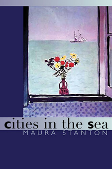 Cover image for Cities in the Sea
