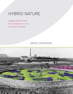 Cover image for Hybrid nature: sewage treatment and the contradictions of the industrial ecosystem