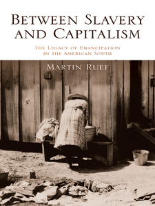 Cover image for Between Slavery and Capitalism: The Legacy of Emancipation in the American South