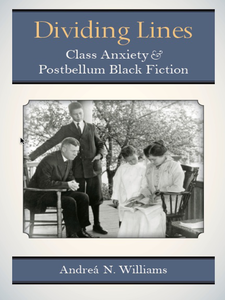Cover image for Dividing Lines: Class Anxiety and Postbellum Black Fiction