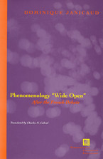 Cover image for Phenomenology