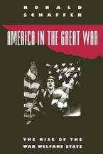 Cover image for America in the Great War: the rise of the war welfare state