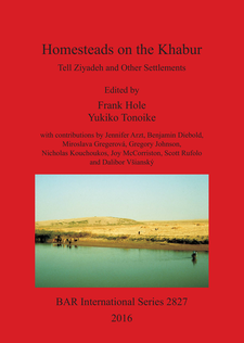 Cover image for Homesteads on the Khabur: Tell Ziyadeh and Other Settlements