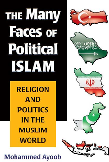 Cover image for The Many Faces of Political Islam: Religion and Politics in the Muslim World