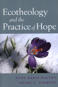 Cover image for Ecotheology and the practice of hope