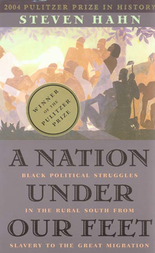 Cover image for A nation under our feet: black political struggles in the rural South from slavery to the great migration
