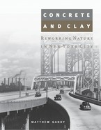 Cover image for Concrete and clay: reworking nature in New York City