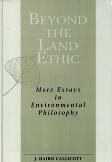 Cover image for Beyond the Land Ethic: More Essays in Environmental Philosophy