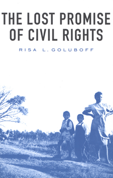 Cover image for The lost promise of civil rights