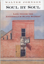 Cover image for Soul by soul: life inside the antebellum slave market