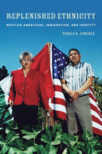 Cover image for Replenished ethnicity: Mexican Americans, immigration, and identity