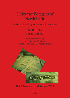 Cover image for Holocene Foragers of North India: The Bioarchaeology of Mesolithic Damdama
