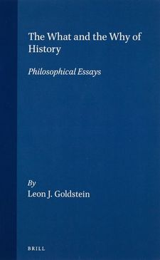 Cover image for The what and the why of history: philosophical essays
