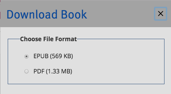 A screenshot of the file download options displayed in a modal menu